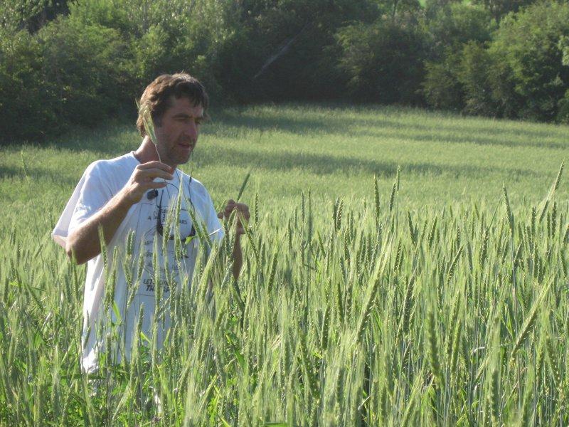 PESTICIDES  Semaine pour les alternatives aux pesticides : Le témoignage de Philippe dans Témoignages Philippe
